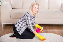 kensington carpet cleaning services in w8